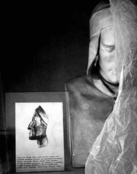 Opera del prof. Fabio Frassetto: Ricostruzione del cranio di Dante