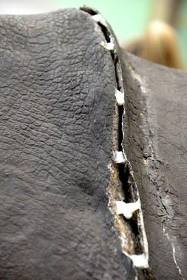 Particolare del Rinoceronte Indiano durante il restauro - Chiusura delle fessurazioni