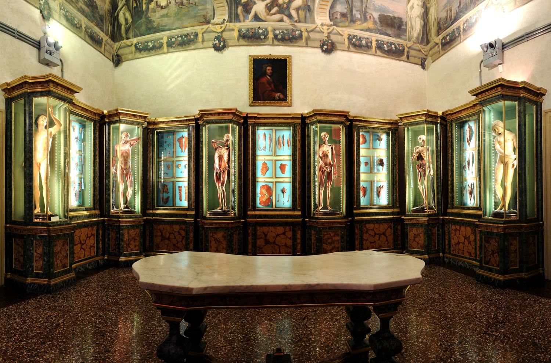 Sala delle Cere Anatomiche di Ercole Lelli