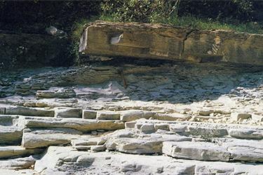 Leonardo geologo 5 secoli dopo - Conferenza