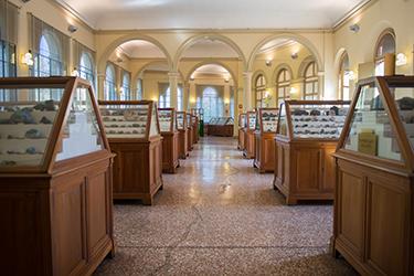"""Storia della Collezione di Mineralogia """"Museo Luigi Bombicci"""" - Visita guidata"""
