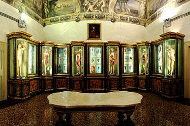 Visite guidate alle collezioni del Museo di Palazzo Poggi