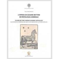 L'opera di Cesare Bettini
