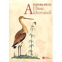 Natura picta