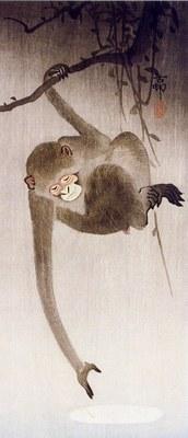 Ohara Koson Scimmia