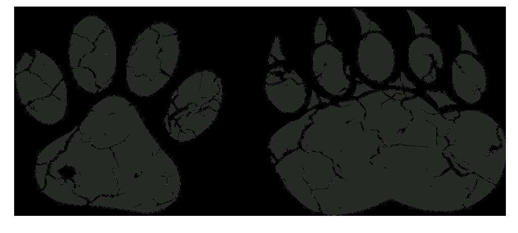 Illustrazione con orme di animali