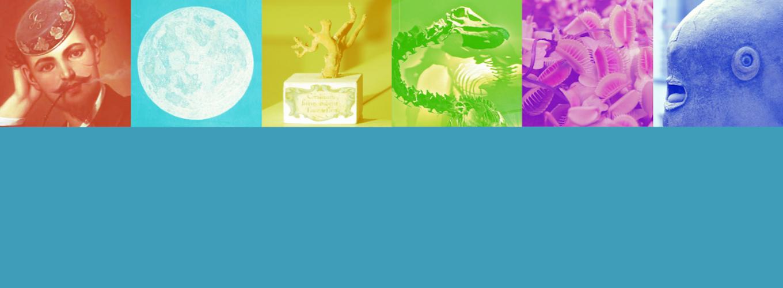 Oggetti museali con filtri colorati
